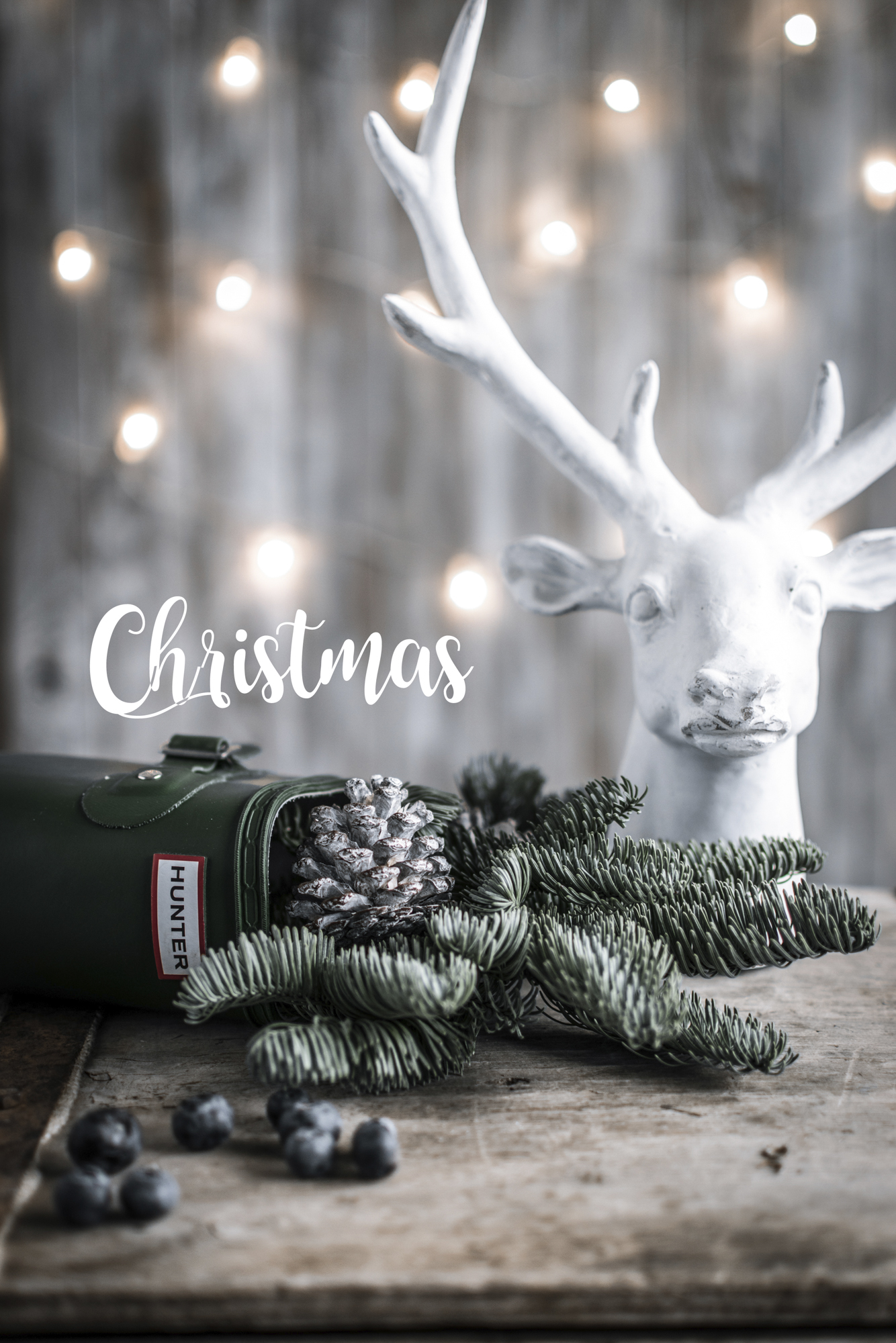 Navidad lolayelcaracolverde-2