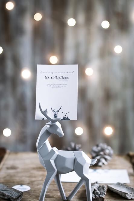 Packaging Les Collections Navidad (1 de 9)
